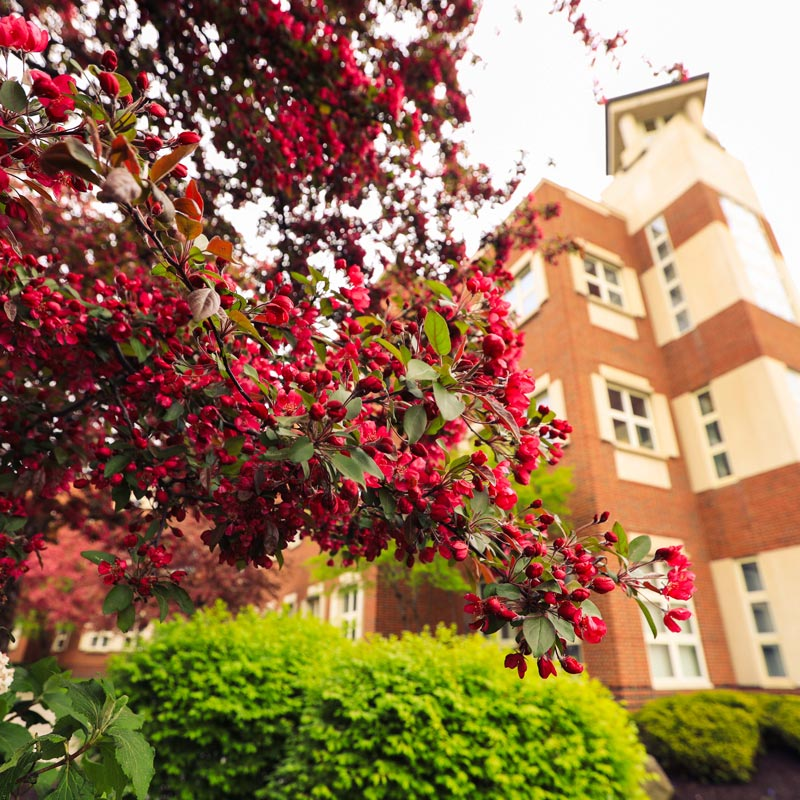 Contact School of Education | SUNY Geneseo