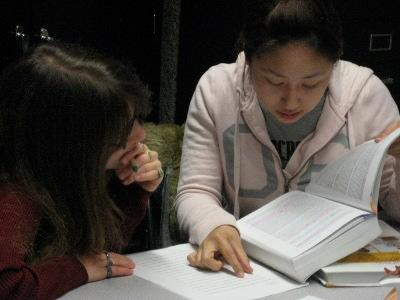 Two students studying
