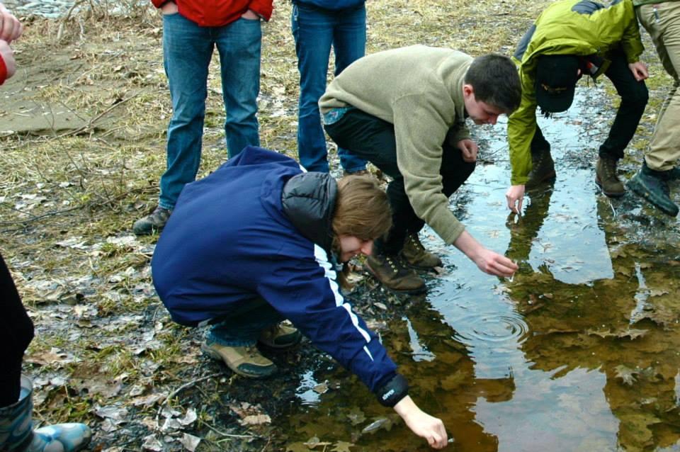 Activities in Letchworth