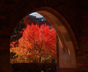 Taken from Blake Hall, in fall.
