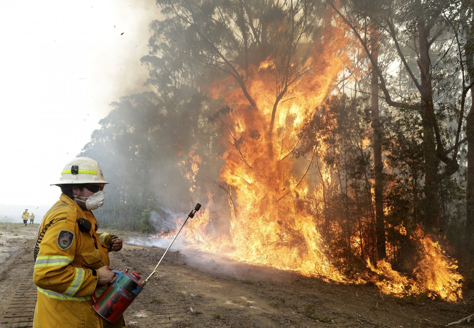 Photograph of a firefighter combating a fire in a line of trees