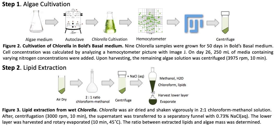 Methods for growing algae
