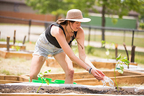 A student works in the eGarden at Geneseo