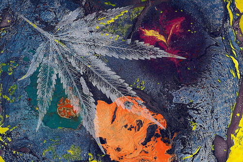 Abstract art of marijuana leaf