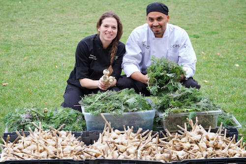 Chefs from Campus Auxiliary Services show garlic that was grown in the e-Garden