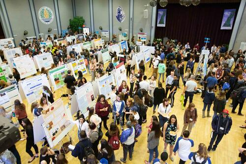 GREAT Day poster session 2019