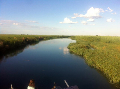 a view of the Okavango Delta